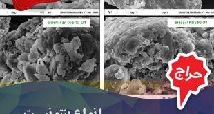 بنتونیت های ارگانوفیل