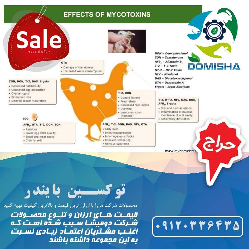عوارض افلاتوکسین در طیور و پرندگان
